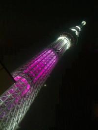 20130317_skytree_pink_n1