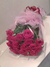 20131018_roses_n1