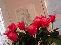 20140523_roses_tsunobue_n