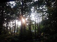 20140730_karuizawa_yuuhi_n