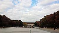 20141110_park_ueno_n