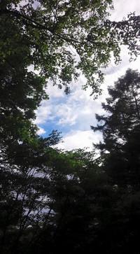 20150719_karuizawa_yuugata_n