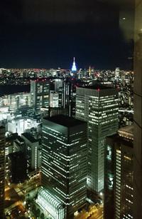 20181228_tokyo_night_view_n