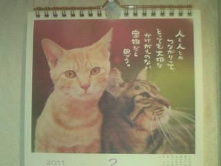 カレンダーの中の猫ちゃん