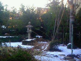「冬時間の庭」